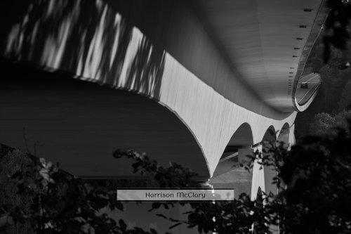Natchez Bridge